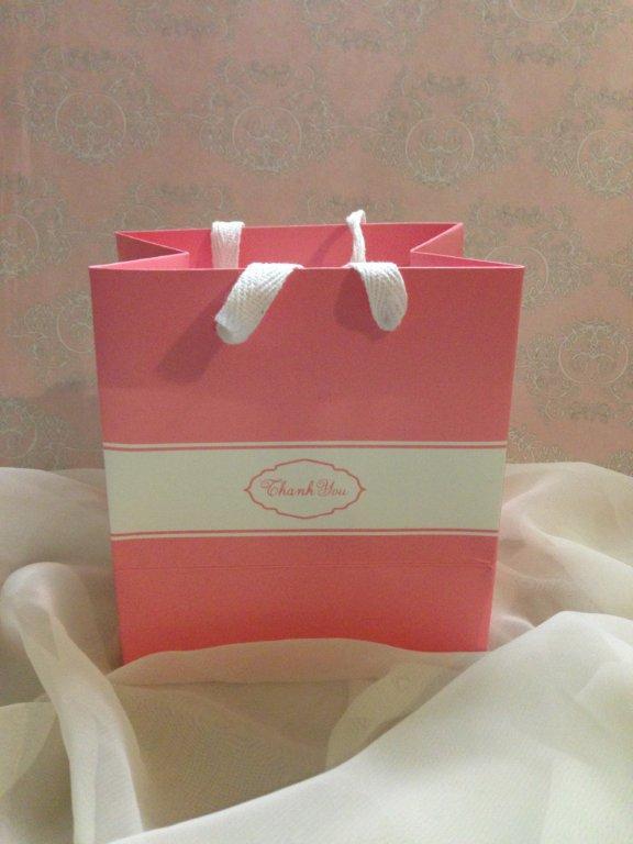 Pretty Pink Art Paper Carrier